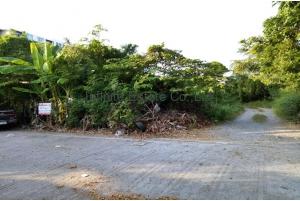 80927, ขายที่ดินทำเลดีหมู่บ้านบางพลีนิเวศน์ 268 ตารางวา ถนน บางนา-ตราด กม.10