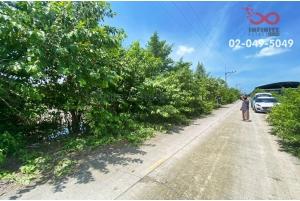 83175, ขายที่ดิน 200 ตารางวา ซอยไอยรา19 ปทุมธานี