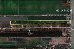 83216, ที่ดินพร้อมบ้าน 10 ไร่ ซอยเลียบคลอง11ตำบลบึงกาสาม หนองเสือ ปทุมธานี