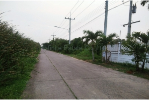 80975, ที่ดิน 200 ตารางวา ถนนลำลูกกา ซอยลำลูกกา 45