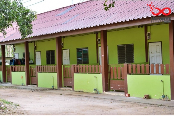 81745, ที่ดินพร้อมบ้านเช่า 20 ห้อง ถนนหนองคล้า ชลบุรี